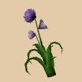flowertalljungle.png